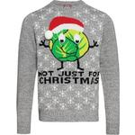 Christmas Shop Adults Unisex Sprouts Christmas Jumper - S / Grey