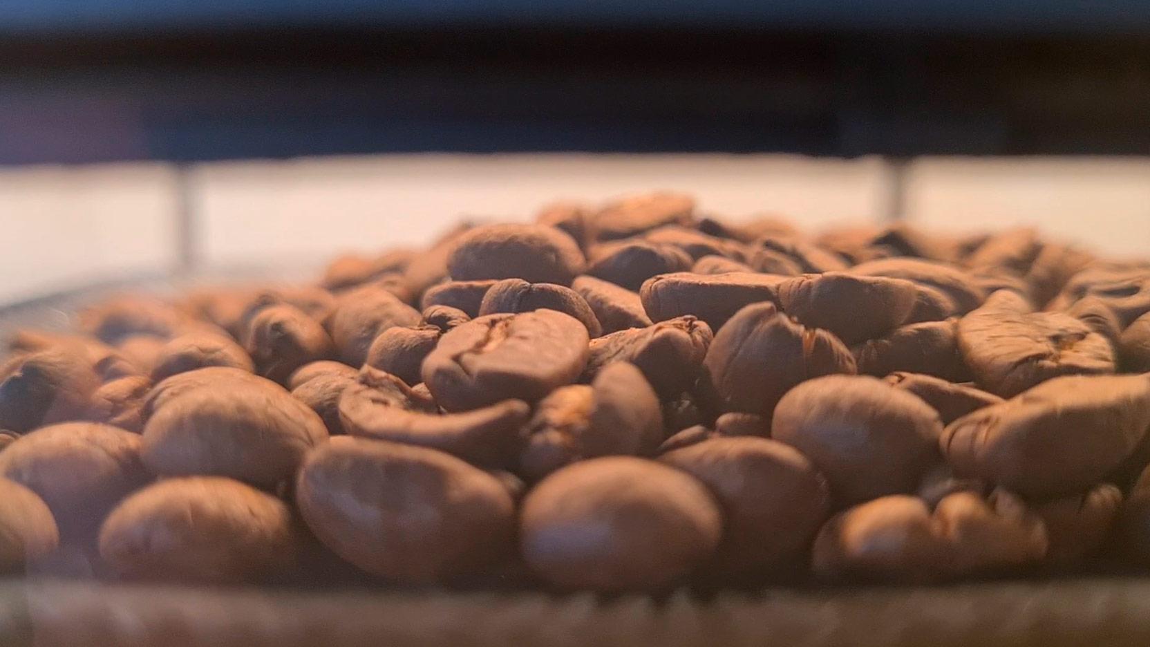 Bild av kaffebönor som syns genom behållaren på Russell Hobbs Grind and Brew