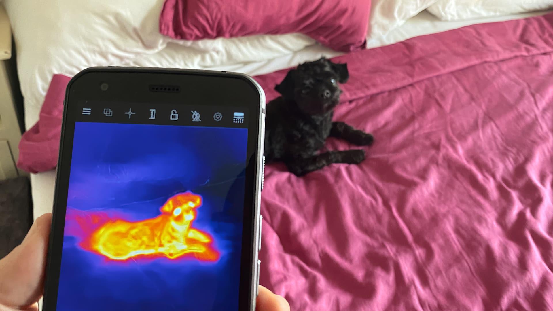 Cat S62 Pro Värmekamera exempel