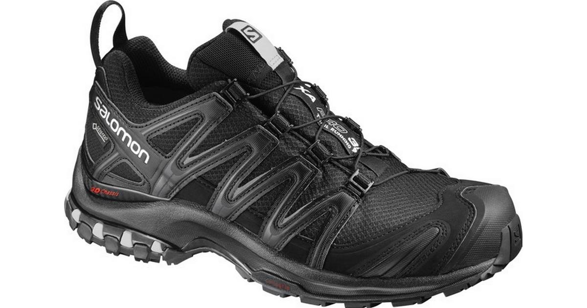Salomon XA Pro 3D GTX W BlackMineral Grey