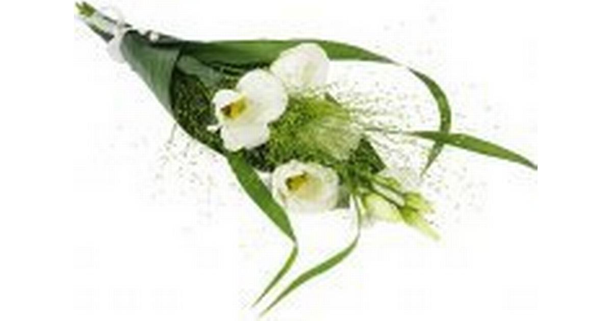 kondoleans till begravning