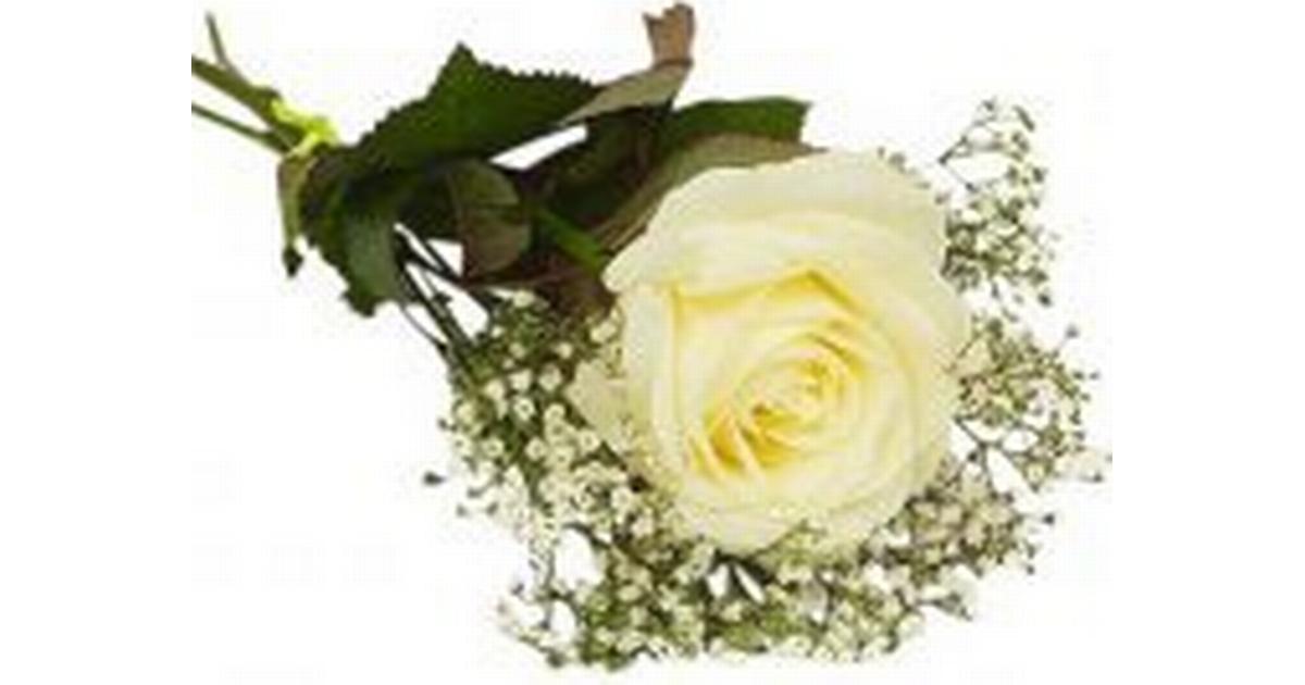 vilka blommor till begravning