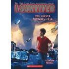 I Survived the Joplin Tornado, 2011 (I Survived #12) (Häftad, 2015)