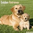 Golden Retriever Calendar 2018 (Häftad, 2017)