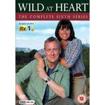 Wild at heart Filmer Wild At Heart - Series 6 (DVD)