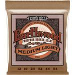 Strängar Ernie Ball Earthwood Medium Light
