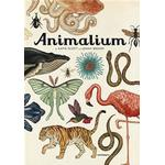 Animalium (Inbunden, 2015)
