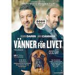Vänner dvd Filmer Vänner för livet (DVD) (DVD 2015)