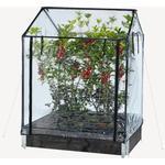 Miniväxthus Hortus Greenhouse 211-152 Rostfritt stål Plast