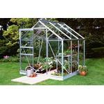 Fristående växthus - Kvadratisk Halls Popular 66 3.8m² Aluminium Glas