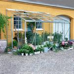 Väggväxthus Halls Royal 612 7.2m² Aluminium Glas