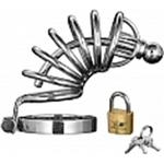 Master Series Asylum 6 Ring Locking Chastity Cage