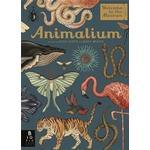 Animalium (Inbunden, 2017)