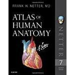 Atlas of Human Anatomy (Pocket, 2018)