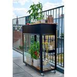 Miniväxthus - Härdat glas Juliana Urban Vertical 0.25m² Aluminium Härdat glas