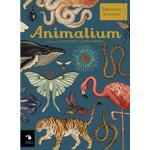 Animalium (Kartonnage, 2019)