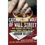 Catching the Wolf of Wall Street (Häftad, 2011)