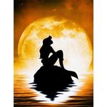DIY Sihouette Figure C Diamond Painting 30x40cm Poster