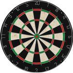 vidaXL Professional Dartboard in Sisal with 6 Darts