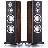 Högtalare Monitor Audio Platinum PL300