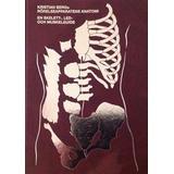 Rörelseapparatens anatomi Böcker Rörelseapparatens anatomi: en skelett, led och muskelguide (Inbunden, 2016)