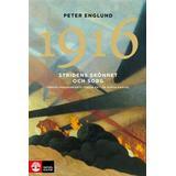 Stridens skönhet och sorg Böcker 1916 Stridens skönhet och sorg: första världskrigets tredje år i 106 korta kapitel (Inbunden, 2015)