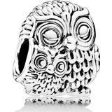 Smycken Pandora Charming Owls Silver Charm (791966)