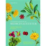Uppslagsverk Böcker Odlarens handbok om medicinalväxter: uppslagsverk över läkande örter och huskurer (Inbunden, 2017)