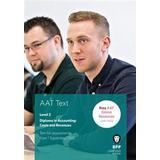 Aat Böcker AAT - Costs and Revenues (Häftad, 2015)