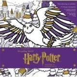 Harry potter colouring Böcker Harry Potter: Winter at Hogwarts: A Magical Colouring Set (Inbunden, 2016)