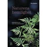 Naturens hemlighet Böcker Naturens hemlighet: Återfinn din plats i det stora sammanhanget (Inbunden)