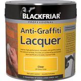 Lacquer Paint Blackfriar Professional Anti-Graffiti Lacquer Paint Transparent 5L