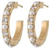 Smycken Edblad Estrid Earrings - Gold