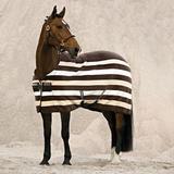 Hästtäcken Horseware Rambo Deluxe