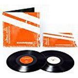 Vinylskivor Rammstein - REISE, REISE [VINYL]