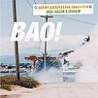 Benny Anderssons Orkester - Bao