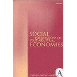 Social Foundations of Postindustrial Economies (Pocket, 1999)