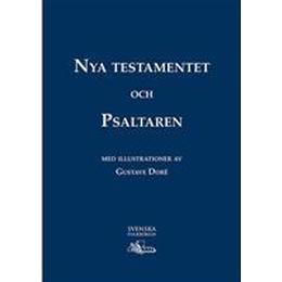 Nya Testamentet och Psaltaren - Storstilsbibel (Inbunden, 2016)