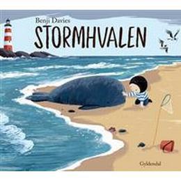 Stormhvalen (Inbunden, 2016)