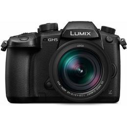 Panasonic Lumix DMC-GH5 + 12-60mm OIS