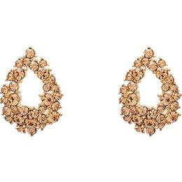 Lily and Rose Petite Alice Brass Earrings w. Swarovski Crystal (61627)