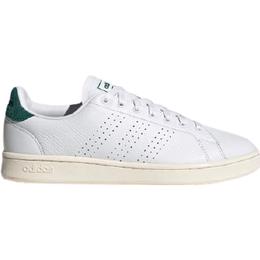 Adidas Advantage - Cloud White/Cloud White/Collegiate Green