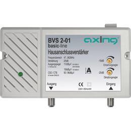 Axing BVS 2 -01