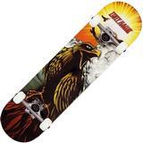 """Tony Hawk Signature Series 180 Hawk Roar 7.75"""""""
