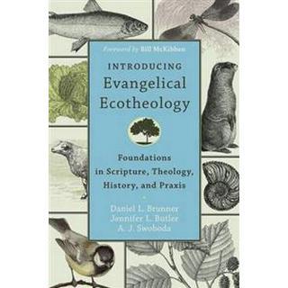 Introducing Evangelical Ecotheology (Pocket, 2014)