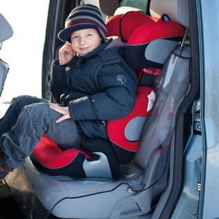 Alvi Car Seat Protector