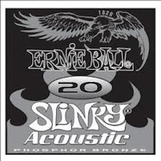 Ernie Ball P01820