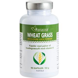 Panacea Wheat Grass Juice Powder 90 st