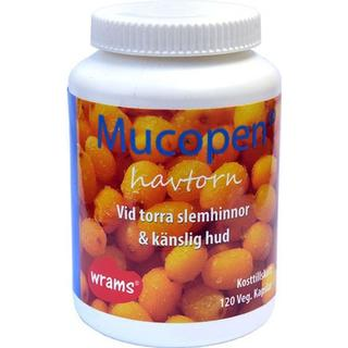 Wramsaroma Mucopen 120 st