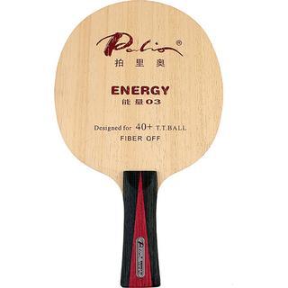 Palio Energy 03